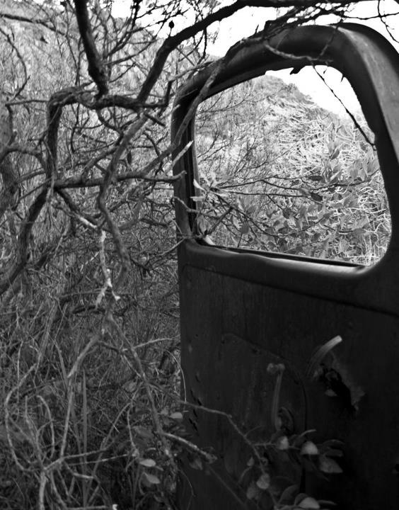 Rusting car. Photographed in Citrusdal by Storm Areington.
