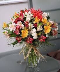Image result for peruvian lilies