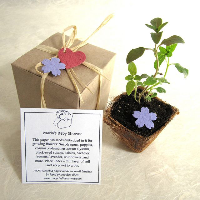 100 Wedding Favor Plantable Pots And Paper   Flower Seed Kit.