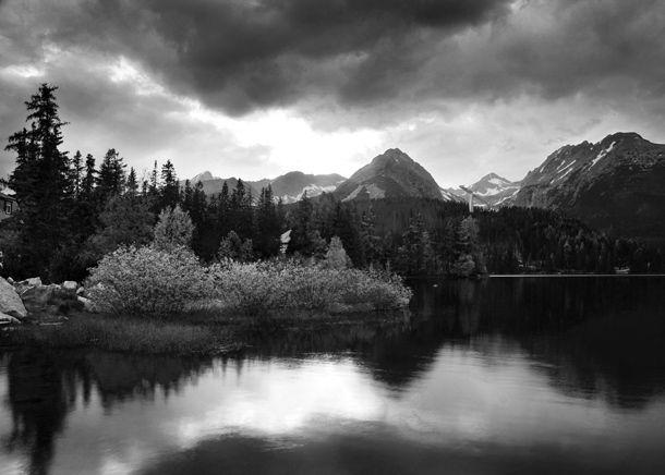 Discover how to take stunning monochrome images with our black and white photography tips!