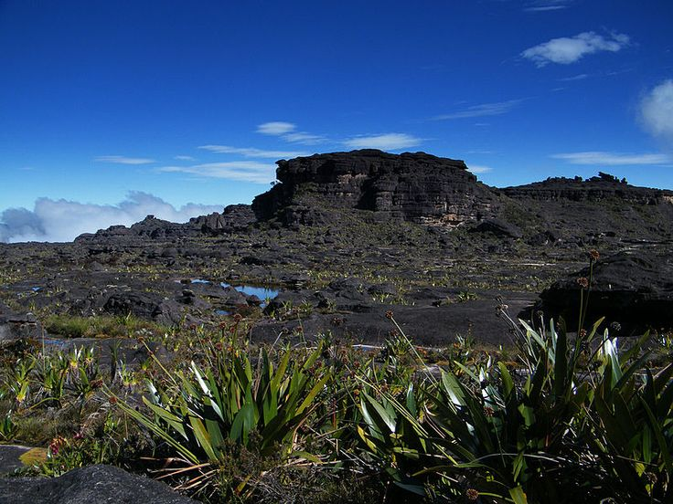 Roraima Maverick Stone3 - Mount Roraima - Wikipedia, the free encyclopedia