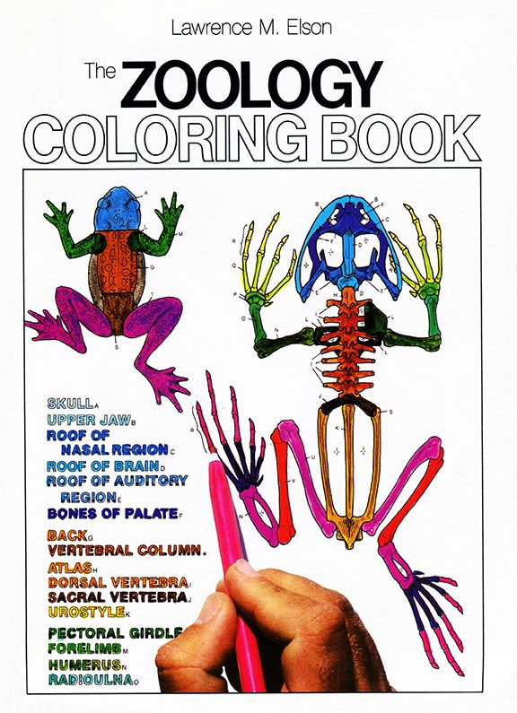 The Zoology Coloring Book (14-15-16-17+Y) [Zoology]