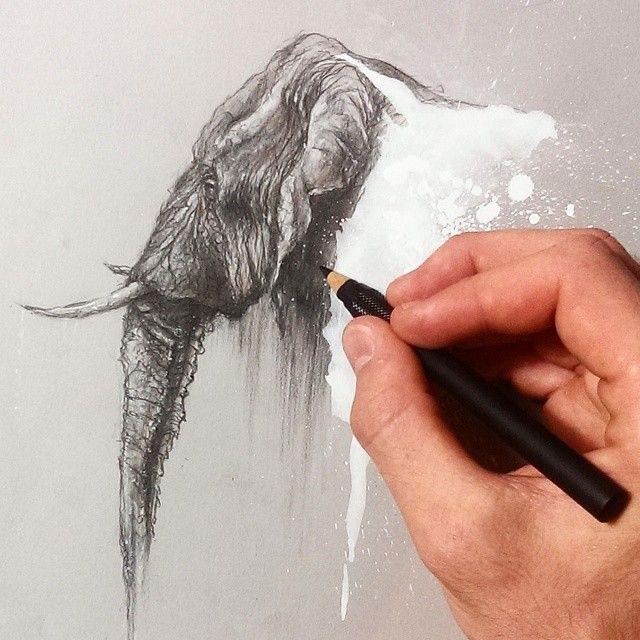 sol whiteside artist elephant tusks