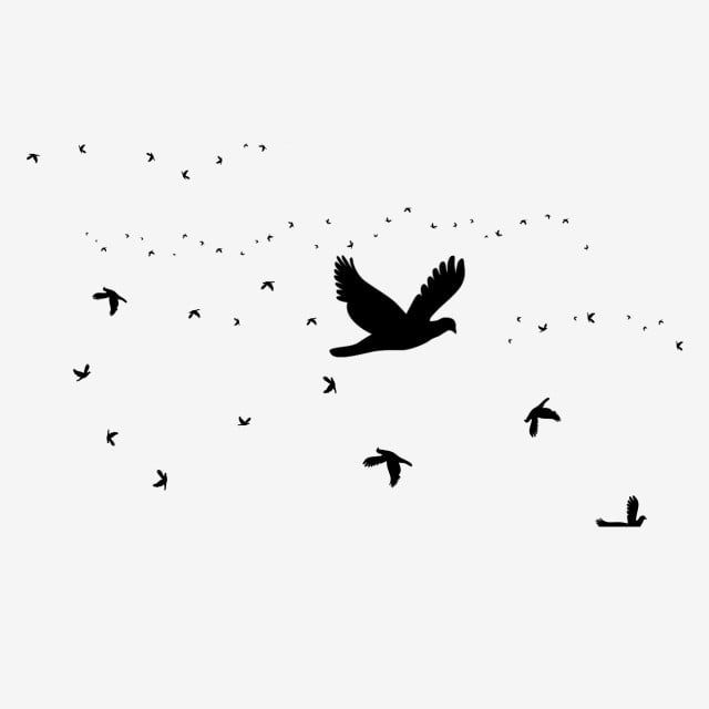Fresh Black Bird Decorative Element Flying Bird Animal Little Bird Png Transparent Clipart Image And Psd File For Free Download Black Bird Black And White Cartoon Birds Flying