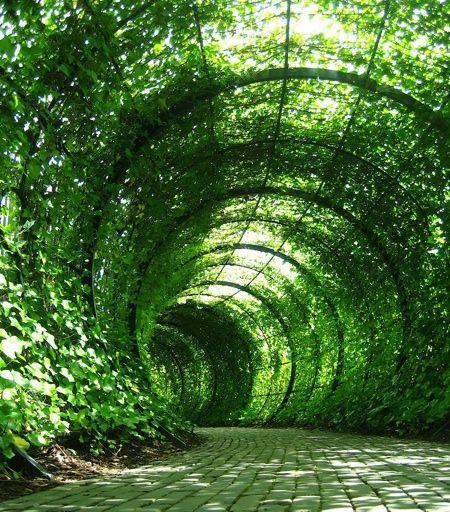Cantilever Pergola Designs: 12 Best Pergola Cantilevered Images On Pinterest