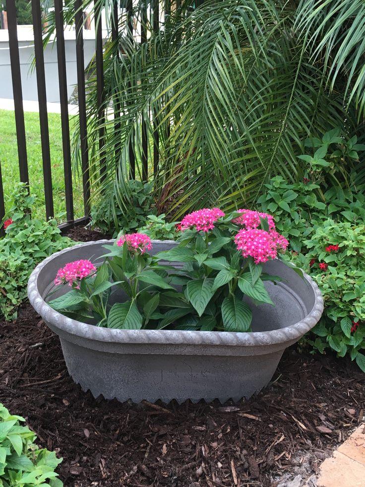 10 best Potty Mouth Garden Flower Frames images on Pinterest Large