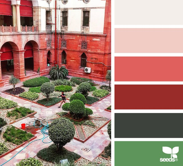{ courtyard hues } image via: @annapurnamitra