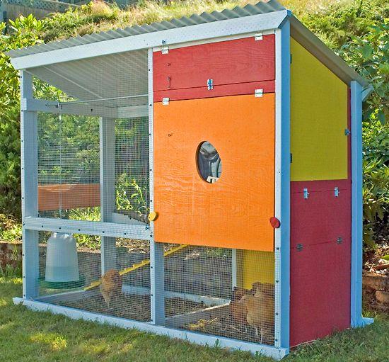 Colorful predator-proof chicken coop in Olympia, Washington