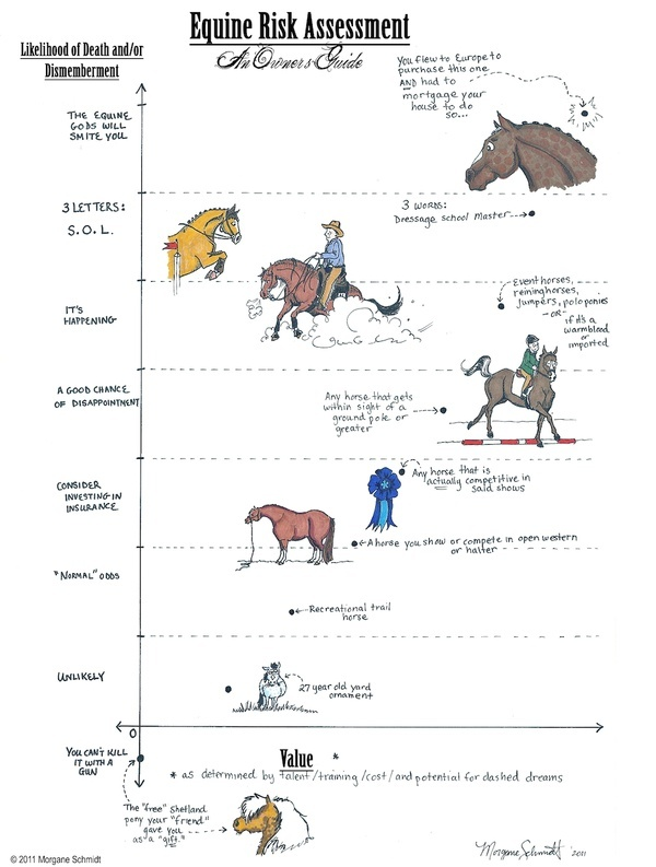 Equine Risk Assessment Funny