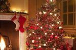 Prelit artificial Christmas trees are the epitome of convenience --- they take away the hassle of hanging the lights yourself. Perhaps the only occurrence in which prelilt trees aren't convenient is when a bulb or an entire string burns out. Finding the reason for the burned-out Christmas light is typically often difficult, but when the string is...