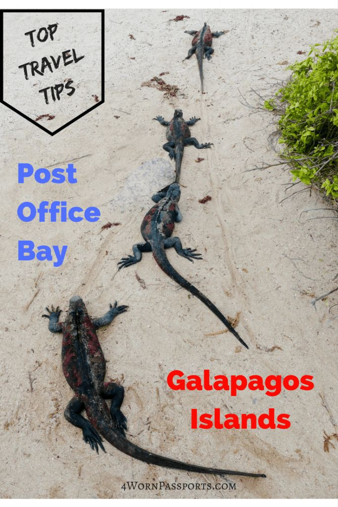Travel Tips for Visiting Post Office Bay on Floreana, Galapagos Islands