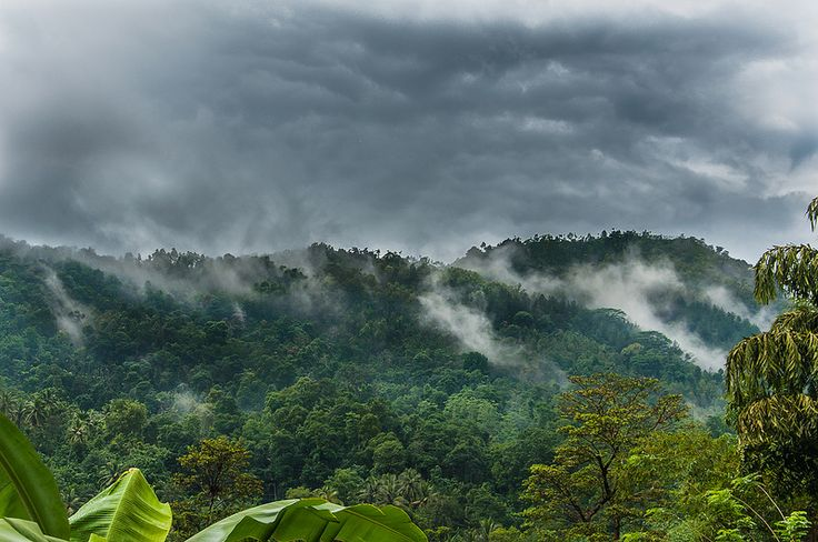 Knuckles Mountain Range, Sri Lanka #SriLanka #Knuckles #Mountains