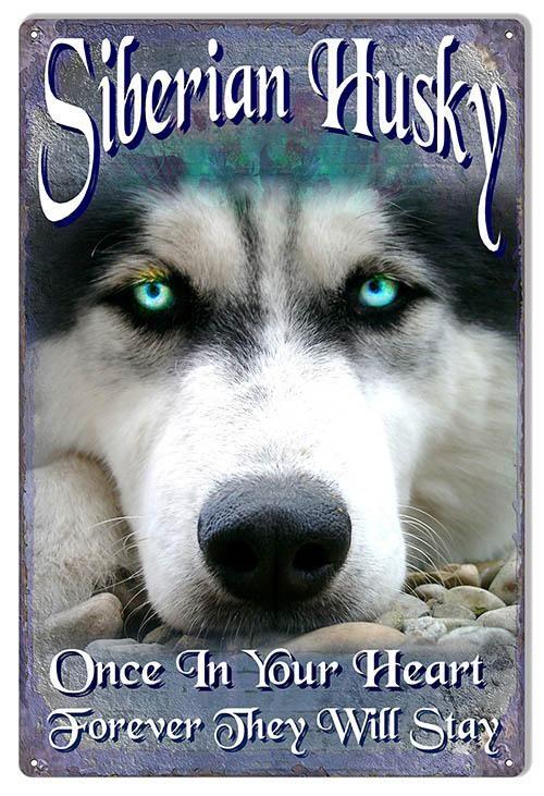Siberian Husky By Artist Phil Hamilton Sign 12x18 Siberian Husky