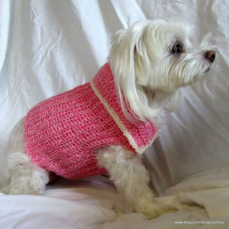 -crocheted dog sweater with collar from syntryz