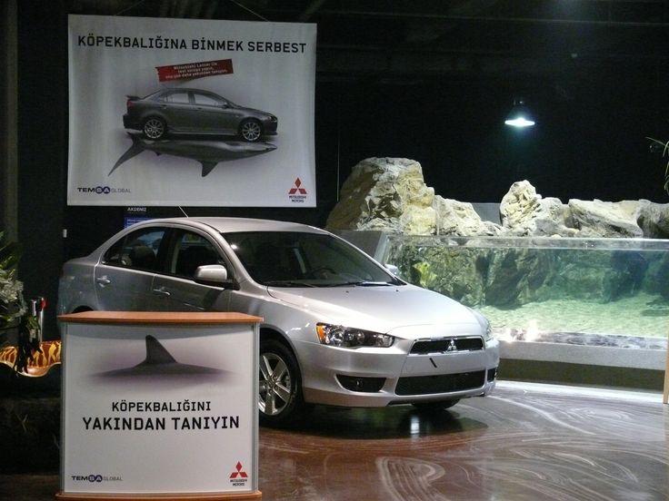 Car launch @ Turkuazoo Aquarium