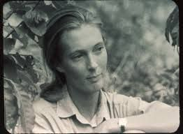 Tasha Tudor, 28.8.1015 Boston - 18.6.2008 Marlboro, amerikanische Schriftstellerin und Zeichnerin