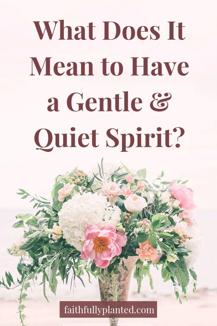 What Does It Mean to Have a Gentle and a Quiet Spirit | Free