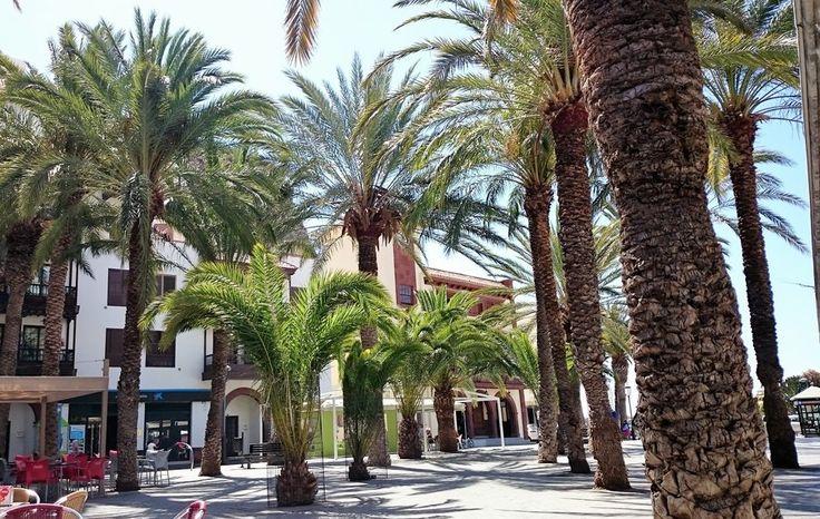 Die schönsten Ecken auf der Insel La Gomera, Foto von Mitglied lija #soreiseich #solebich #reiseguide #travelguide #travel #lagomera #spanien #spain #kanarischeinseln #kanaren #wandern #hiking #beach #strand #delfine #doplhins #sansebastian