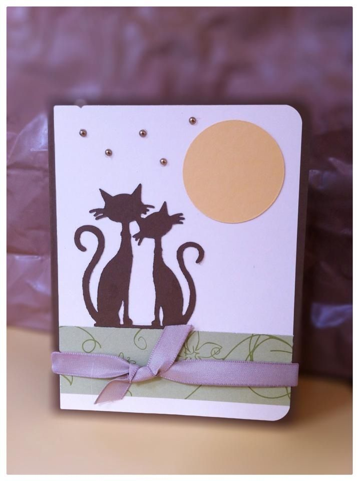 French cats Card