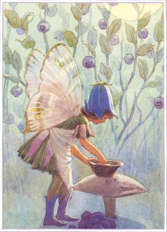 Fairies Margaret Tarrant - Elfen & Boeken