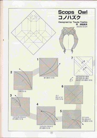Buho Diagrama1