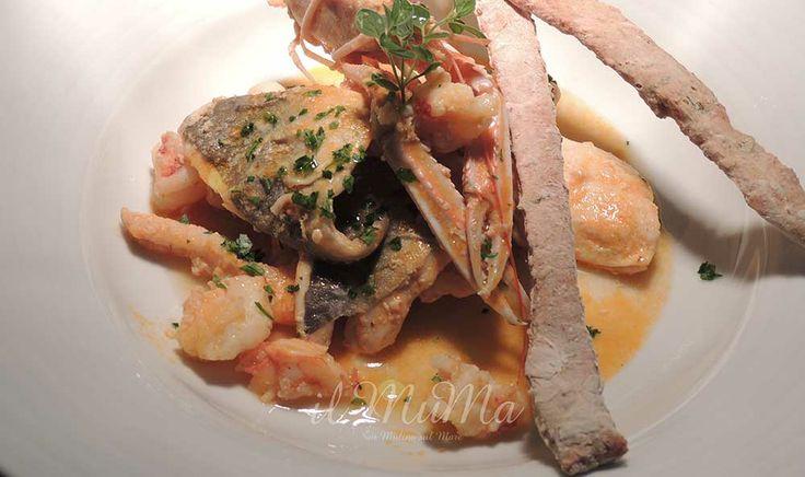 Zuppetta di pesce e crostacei del MuMa con verdurine dell'orto