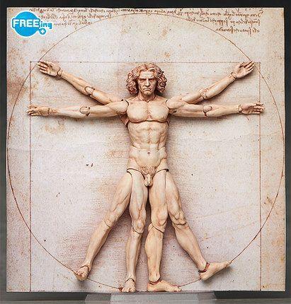 figma 维特鲁威人体图 桌面美术馆