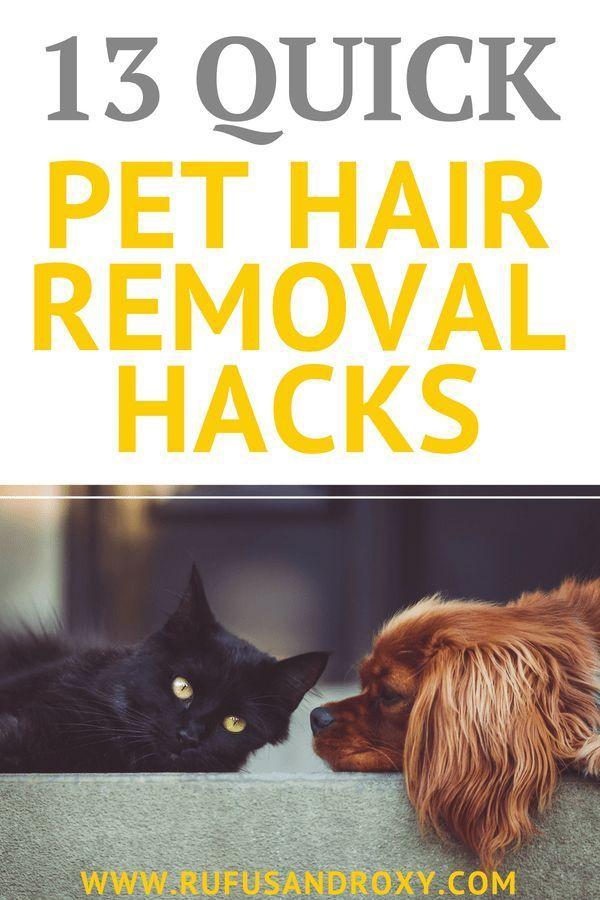13 Quick Pet Hair Removal Hacks Pet Hair Removal Dog Hair Removal Pet Hair