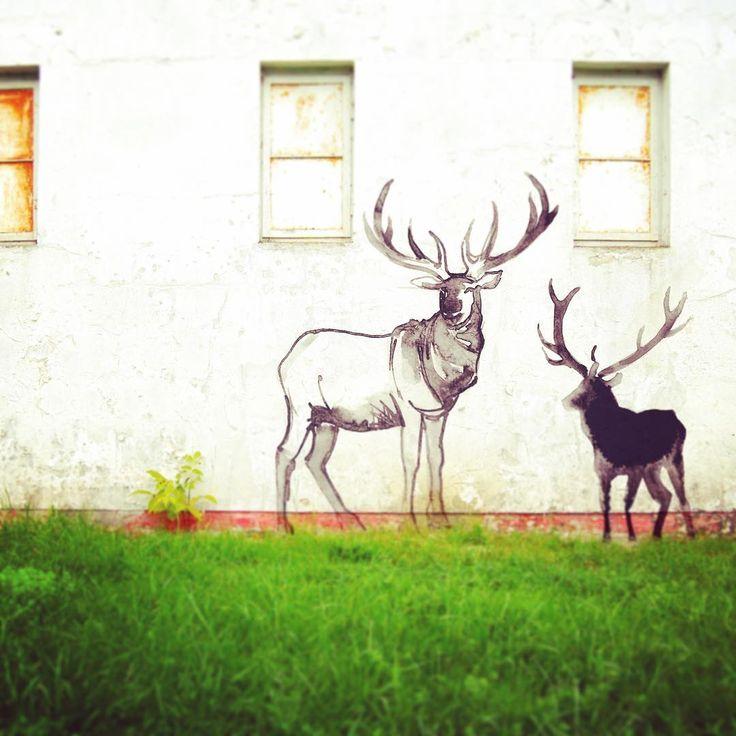 Art anywhere. Art everywhere. #elkrefuge #elk #graffiti #graffitiart #digitalgraffiti #creative #creatives #creativeart #creativeminds #creativepreneur #creativebug #creativebiz #creativeprocess #creativedirector #creativelife #creativeideas #creativespace #paint #painter #painting #paintingoftheday #painteditmyself #paintlife #paintingart #watercolor  #ink #inkart #inkstagram #inklover
