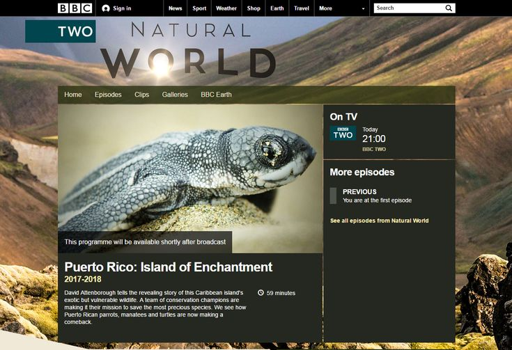 "Programa sobre la vida silvestre puertorriqueña a ser transmitido hoy 20 de marzo de 2017 en la cadena BBC Two. Según la página web de BBC: ""David Attenborough tells the revealing story of this Caribbean island's exotic but vulnerable wildlife. A team of conservation champions are making it their mission to save"