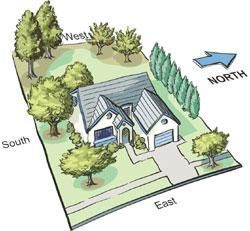 Proper tree placement can save on the cost of heating and cooling year round.  Landscape trees shopper's guides