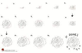 step by step how to draw an open rose