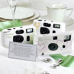 this is the one thing I am for SURE doing. Cameras on each table for pictures :)