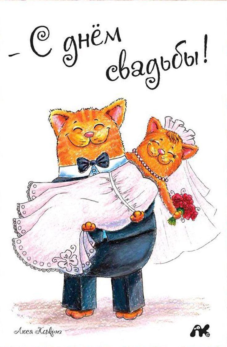 Открытку, с днем свадьбы картинки прикольные жене