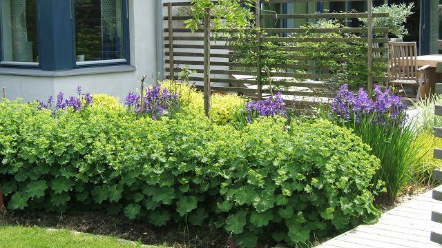 Cattis och Eiras Trädgårdsdesign: Trädgårdsdesignerns tips! Skapa väggar runt uteplatsen eller runt om i trädgården!