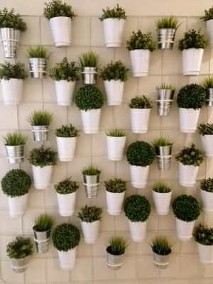 5 ways to grow edibles vertically  |  Permaculture Magazine
