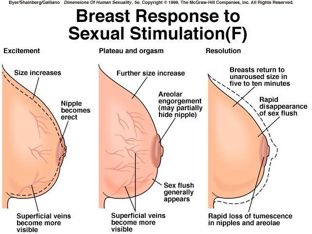 Pin On Sexual Response-6093