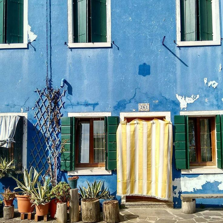 #Venice#Venezia [#thisisVenice] : Al 261 abita qualcuno con il pollice verde le tende gialle e il muro color del cielo ancora bagnato di pioggia. Photo and words @shaula_la_la  YOU CAN HELP US SHOWING THE REAL VENICE | Be featured in our gallery: Follow @veneziaautentica  Use#veneziaautentica#thisisvenice#authenticvenice( More info in the commentsection )