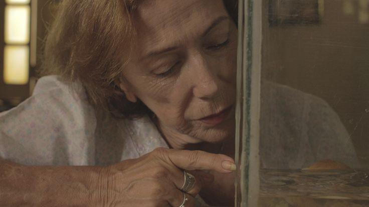 """Cortometraje cubano de la EICTV de Cuba dirigido por Joa Vidal con la actuación de Coralia Veloz En su cumpleaños 65 Rosa organiza una fiesta y recibe supuestos invitados que la ayudan a ocultar su soledad a sus familiares que están lejos."""" #shortfilm #festival #equinoxio #competencia #bogota #cine #eictv #cuba #colombia #art #pelicula #cortometraje #ficcion #new #joavidal #caparazon"""