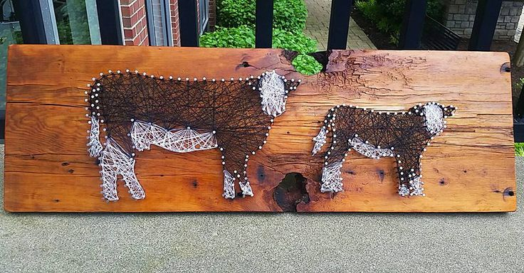 Cattle String Art