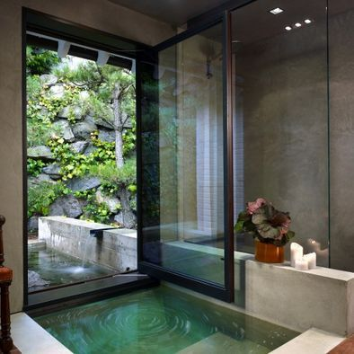 Contemporary Bring The Outdoors In!! The Entry Space Design, Pictures, Remodel, Decor and Ideas