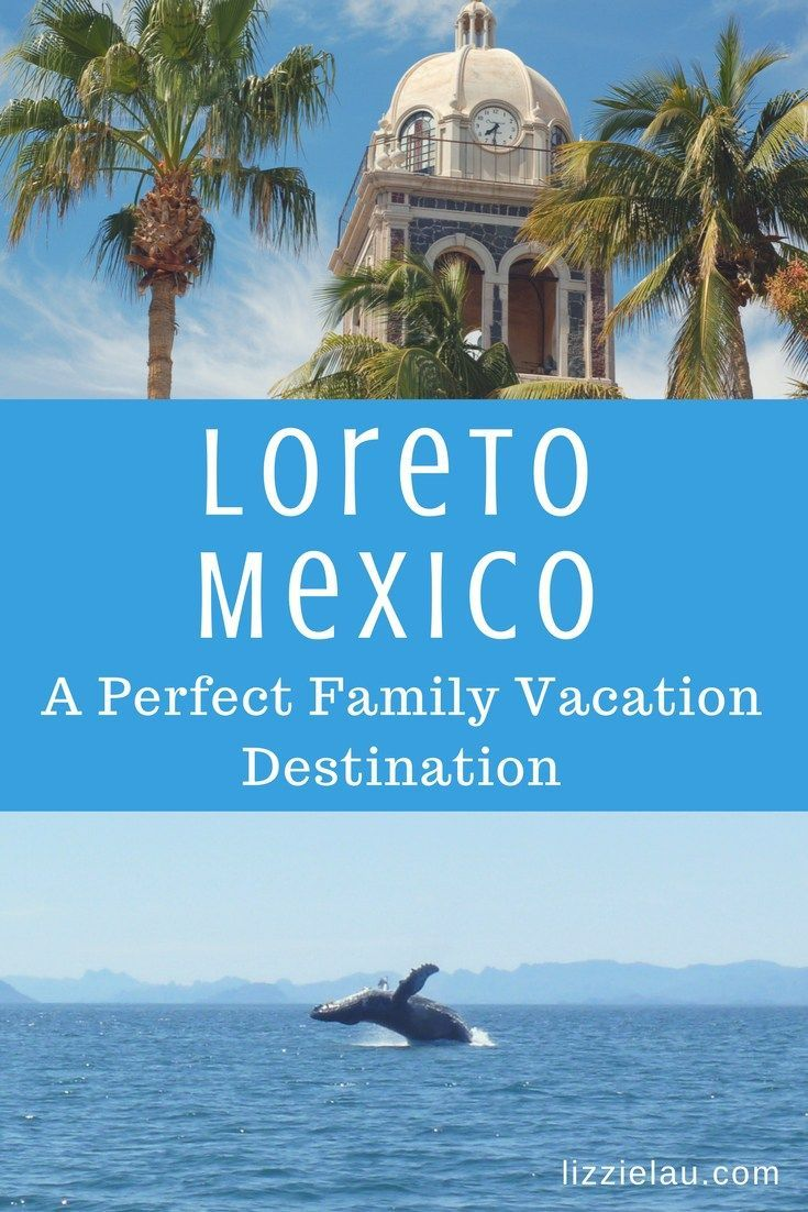 Loreto Mexico, A Perfect Family Vacation Destination - Whales, Dolphins, Sea Lions, and a Whale Shark!