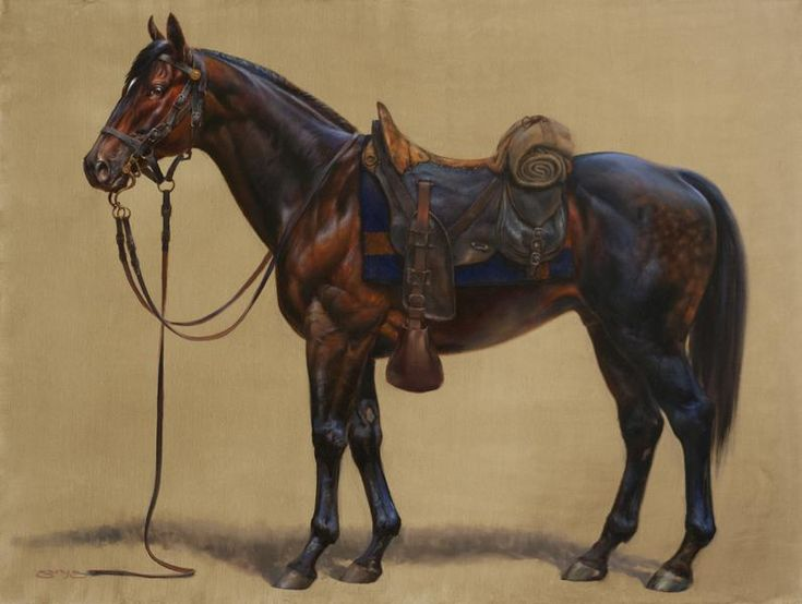 Best Equine Art Images On   Horse Art Equine Art