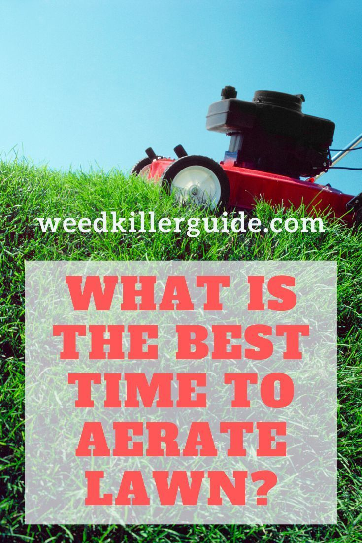 Best Time To Aerate Your Lawn In 2020 Lawn Aerator