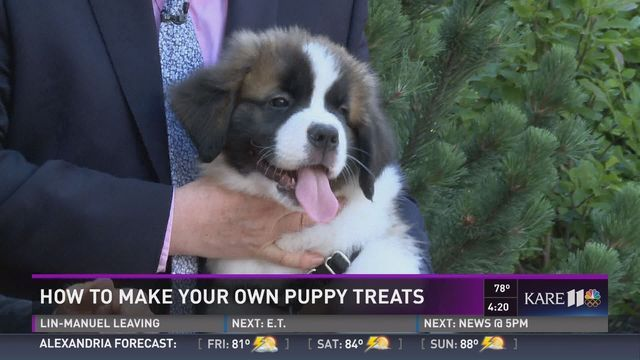 GOLDEN VALLEY, Minn--Twin Cities chef and dog lover, Terry John Zila, has welcomed a new puppy to his family. And today, they both joined us on KARE11 News@4 to share a great recipe for dog treats.