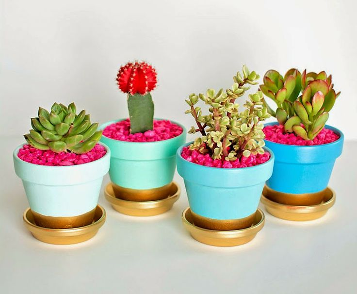 Pretty colorful gold-dipped clay pots! Wow those colors are awesome! #pots #succulents #gold #colors #homedecor #plants #diy