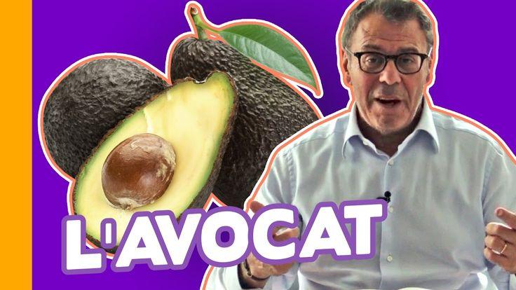 L'Avocat : Aliment-Miracle ou Réserve de Graisses ? Jean ...
