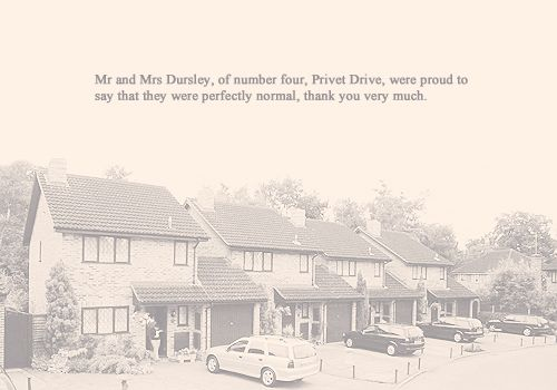 a description of the early life of harry potter Lavender brown (c 1979 or 1980 — 2 may,  early life edit  harry potter, who was in lavender's year,.