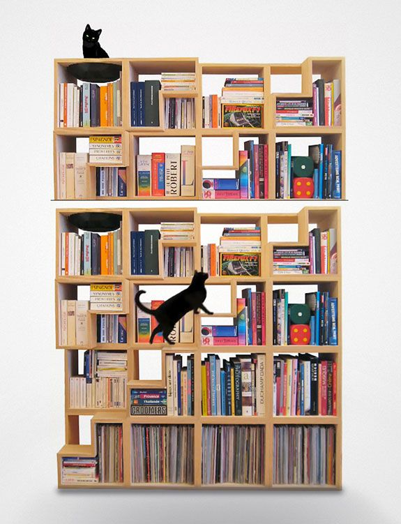 100% Cat-Friendly Modular Bookshelf