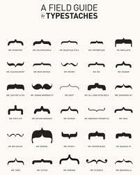 a field guide typestaches
